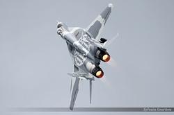 Mikoyan-Gurevich MiG-29A Poland Air Force 111
