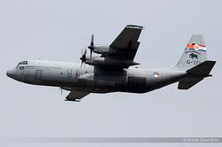 Lockheed C-130H-30 Hercules Netherlands Air Force G-273