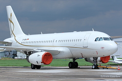 Airbus A319-133X/CJ Daimler Chrysler Aviation - DCA D-ADNA