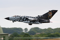 Panavia Tornado ECR Germany Air Force 46+48