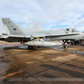 McDonnell Douglas F/A-18A+ Hornet Spain Air Force C.15-84 / 46-12