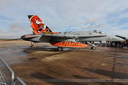 McDonnell Douglas EF-18M Hornet Spain Air Force C.15-41 / 15-28