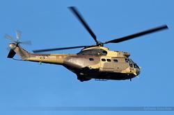 Aérospatiale SA-330B Puma Armée de Terre 1231 / DDK / F-MDDK