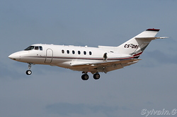 Raytheon Hawker 800XP NetJets Europe CS-DRI
