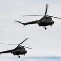 Mil Mi-2 Poland Army 4708 & 7335