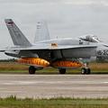 McDonnell Douglas EF-18M Hornet Spain Air Force C.15-43 / 15-30