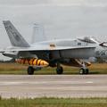 McDonnell Douglas EF-18M Hornet Spain Air Force C.15-64 / 15-34