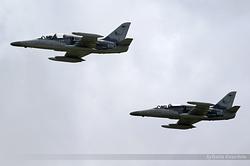 Aero L-159T1 Alca Czech Republic Air Force 6067 & 6050