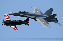 Morane-Saulnier MS.406 J-143 / D-3801 & McDonnell Douglas F/A-18C Hornet Switzerland Air Force J-5020