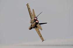 McDonnell Douglas EF-18M Hornet Spain Air Force C.15-31 / 15-18