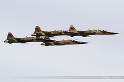 Northrop F-5E/F Tiger Royal Moroccan Air Force MF1001 / 91942 - ME1009 / 91940 - ME1005 / 91936 & Me1003 / 91944