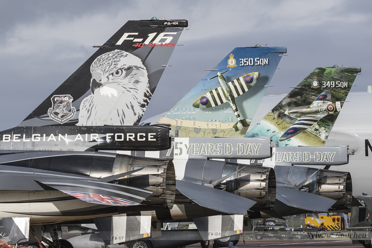 General Dynamics F-16AM Fighting Falcon Belgian Air Force FA-101 , FA-57 & FA-124