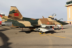 Northrop F-5E Tiger Royal Moroccan Air Force ME1015 / 91924